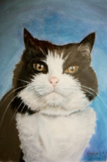 Cat with attitude pastel painting by Soraya