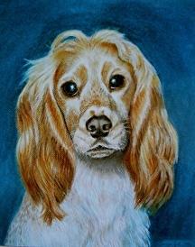 Cute little dog in pastel by Soraya