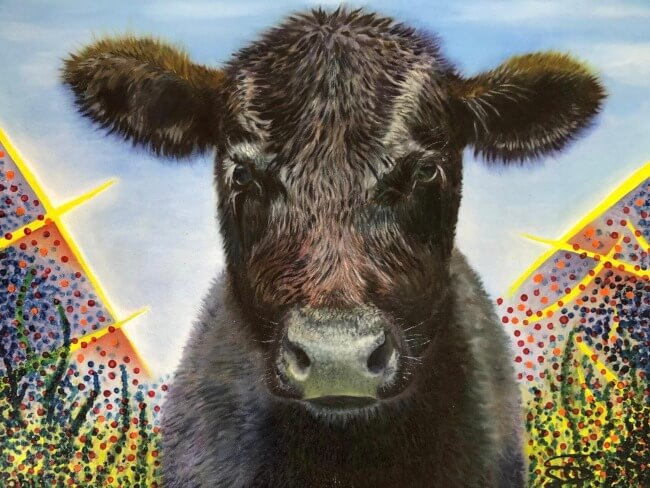 Life. Oil on canvas, painting of calf by Soraya Gwynne-Evans